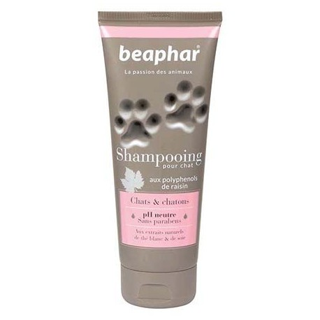 Shampooing pour chats et chatons