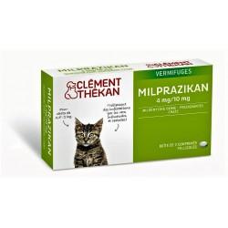 MILPRAZIKAN chatons / chats