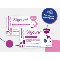 SILYCURE  comprimés à 40 mg...