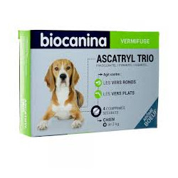 ASCATRYL chiens en boite de...