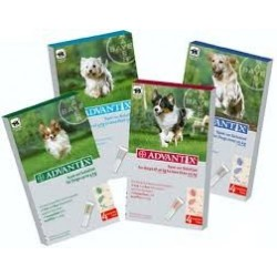 ADVANTIX CHIEN 0,4 ML (1,5-4)  plaq/4    sol ext