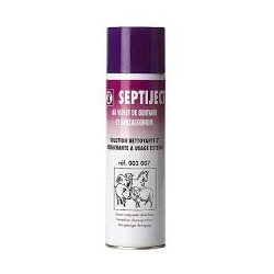 BOMBE ANTISEP SEPTIJECT        450 ml    (002007)