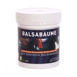 BALSABAUME                     fl/250 ml sol ext