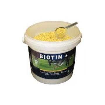 BIOTIN + b/1,4 kg pdr or