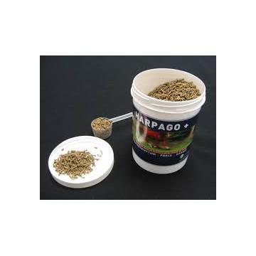 HARPAGO + pot de 500 g ou 4 kg