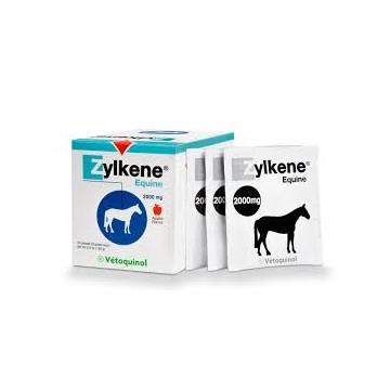 ZYLKENE EQUINE b/20*4 g pdr or