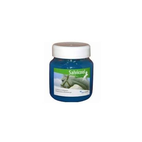 SALVICOOL GEL DETENTE          pot/700 g gel ext