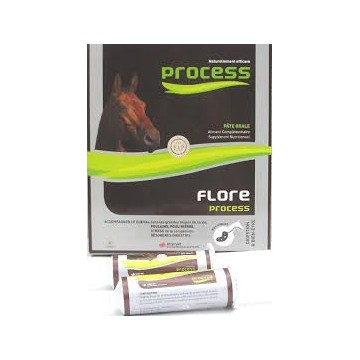 FLORE PROCESS CHEVAL b/5*20 ml pate or
