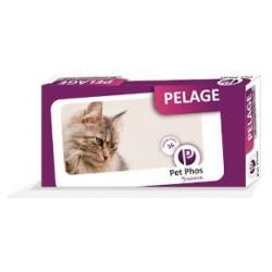 PETPHOS PELAGE FELIN           b/36      cpr