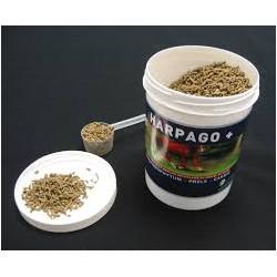 HARPAGO +  SEAU DE 1.5  KG