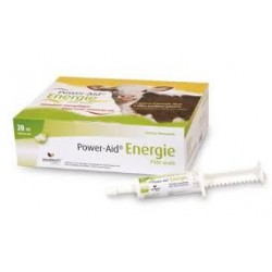Power-AID ENERGIE pâte orale 12 seringues 20 ml
