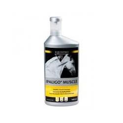 EQUISTRO IPALIGO MUSCLE flacon de 1 litre