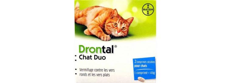 Antiparasitaires internes pour chat